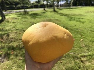 プレミアム三ケ日みかんパン
