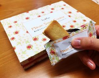 ミカンサンドクッキー 寿太郎みかん&クランベリーのホイップサンド