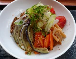 夏の冷やし担々麺〜朱雀姫と大和丸の出会い〜